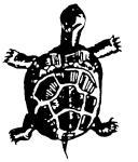 madockawanda turtle